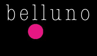 Associazione Belluno-DONNA